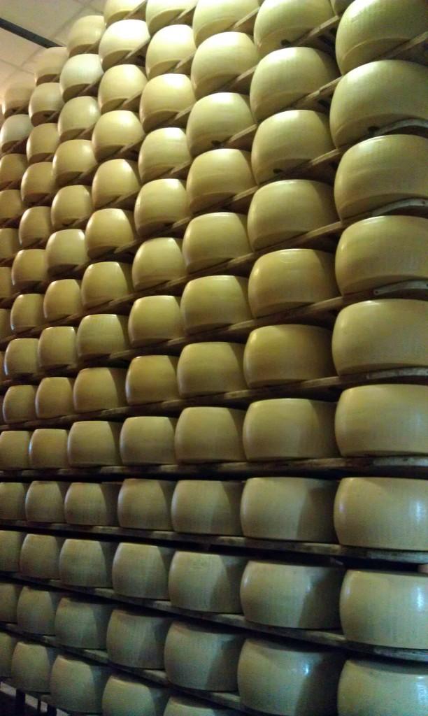 Rows of Aging Parmigiano Reggiano Explore Italian Food, Bologna Style